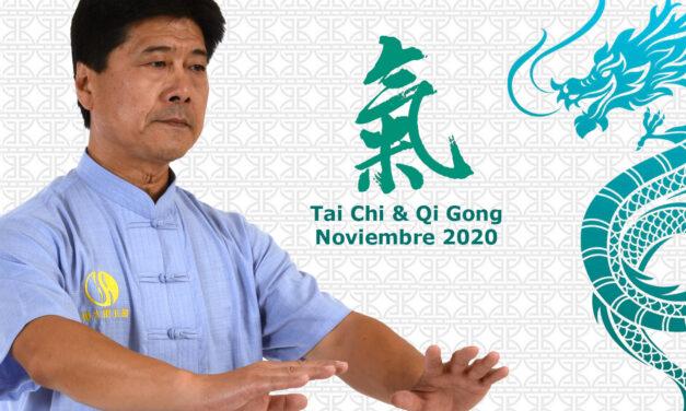 Seminario Tai Chi & Qi Gong para la Salud 2020
